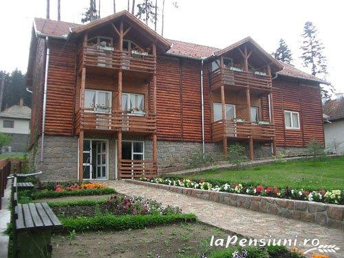 Pensiunea Csomad - accommodation in  Harghita Covasna, Tusnad (09)