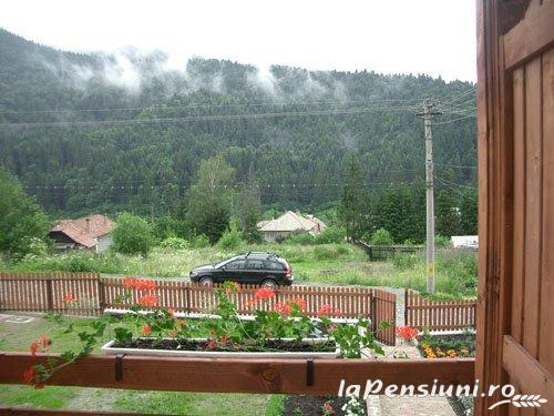 Pensiunea Csomad - accommodation in  Harghita Covasna, Tusnad (10)