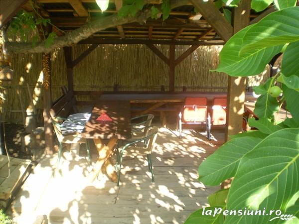 Pensiunea Tora - accommodation in  Oasului Country, Maramures Country (03)