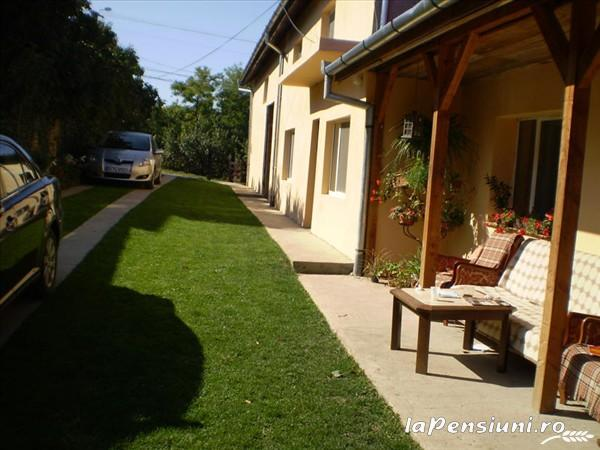 Pensiunea Tora - accommodation in  Oasului Country, Maramures Country (05)