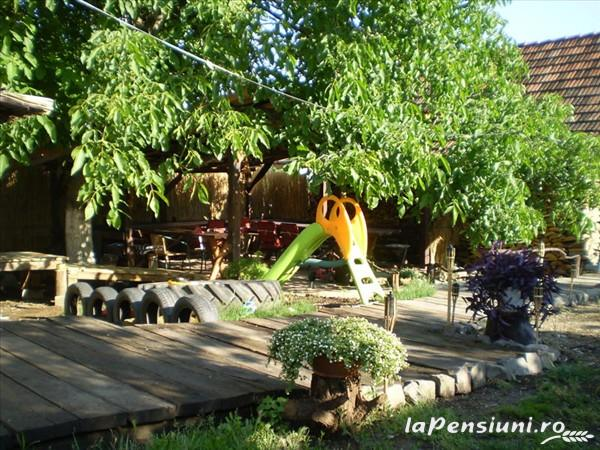 Pensiunea Tora - accommodation in  Oasului Country, Maramures Country (13)