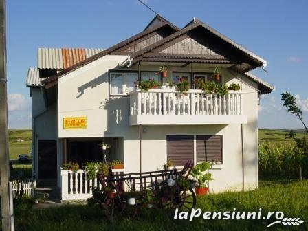 Pensiunea Elena - accommodation in  Oasului Country, Maramures Country (01)