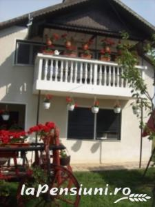 Pensiunea Elena - accommodation in  Oasului Country, Maramures Country (02)