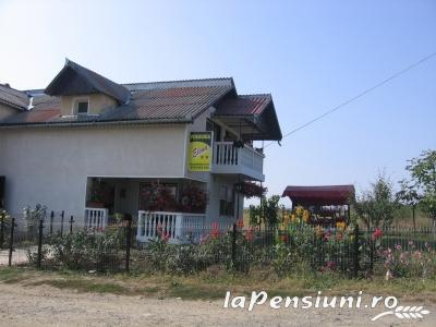 Pensiunea Elena - accommodation in  Oasului Country, Maramures Country (03)