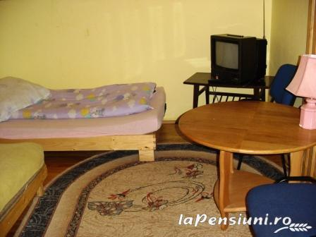 Pensiunea Elena - accommodation in  Oasului Country, Maramures Country (05)
