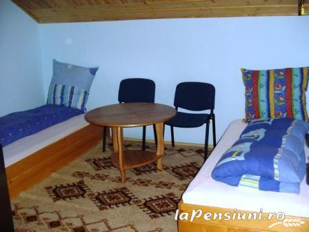 Pensiunea Elena - accommodation in  Oasului Country, Maramures Country (08)
