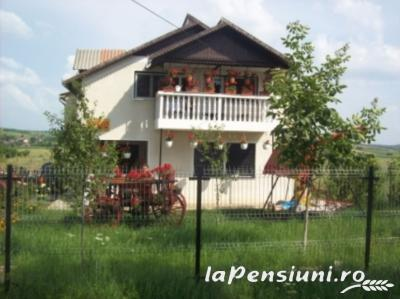 Pensiunea Elena - accommodation in  Oasului Country, Maramures Country (10)