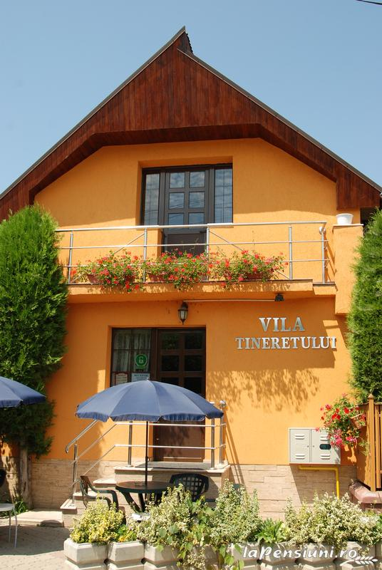 Vila Tineretului - accommodation in  Oasului Country, Maramures Country (01)