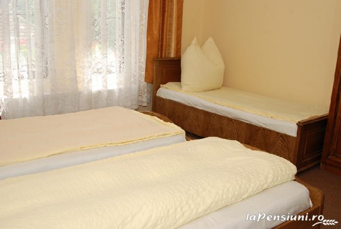 Vila Tineretului - accommodation in  Oasului Country, Maramures Country (05)