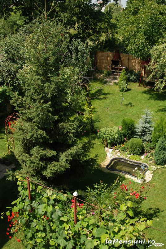 Vila Tineretului - accommodation in  Oasului Country, Maramures Country (06)