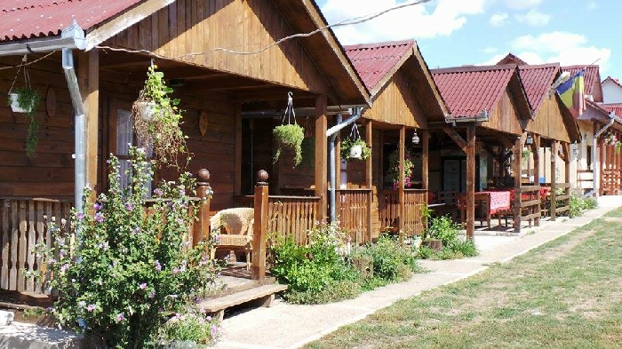 Pensiunea Raul - accommodation in  Oasului Country, Maramures Country (01)