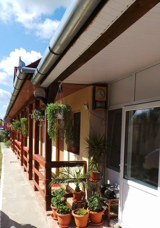 Pensiunea Raul - accommodation in  Oasului Country, Maramures Country (05)