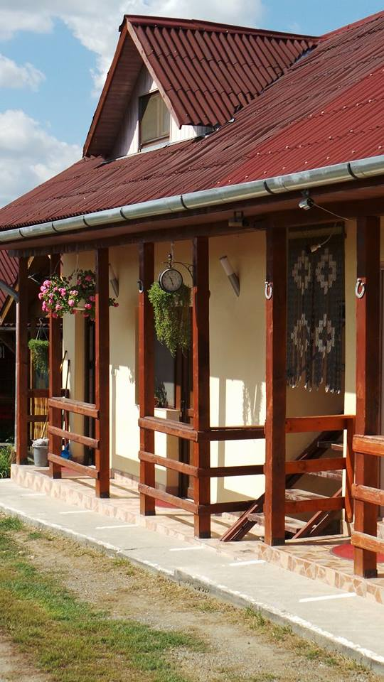 Pensiunea Raul - accommodation in  Oasului Country, Maramures Country (06)