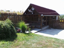Pensiunea Raul - accommodation in  Oasului Country, Maramures Country (10)