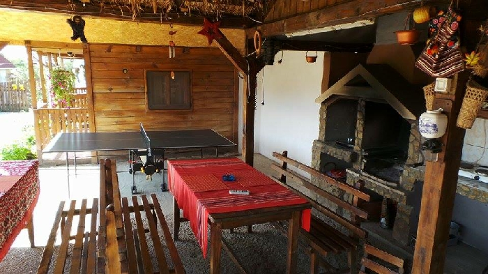 Pensiunea Raul - accommodation in  Oasului Country, Maramures Country (12)
