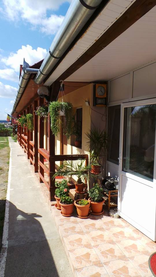 Pensiunea Raul - accommodation in  Oasului Country, Maramures Country (13)