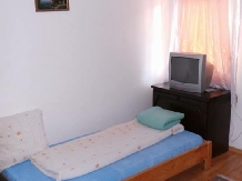 Pensiunea Raul - accommodation in  Oasului Country, Maramures Country (15)