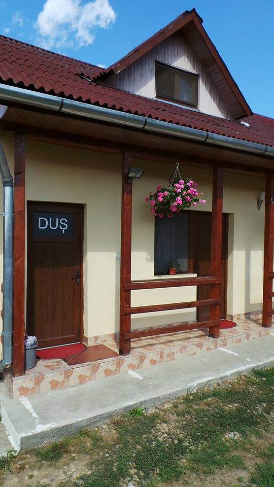 Pensiunea Raul - accommodation in  Oasului Country, Maramures Country (16)