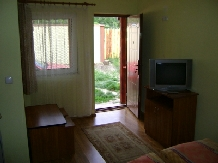 Pensiunea Raul - accommodation in  Oasului Country, Maramures Country (19)
