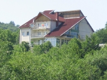 Rural accommodation at  Pensiunea Huta Certeze