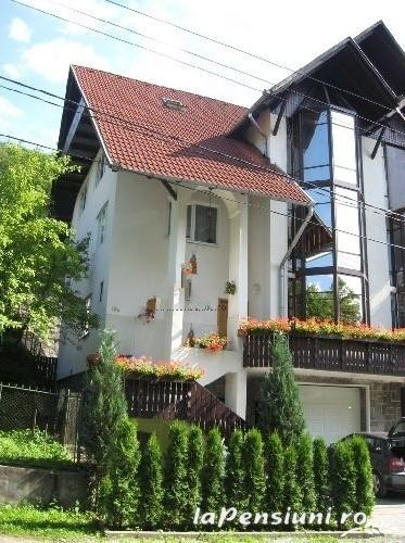 Casa Dan - accommodation in  Sovata - Praid (01)