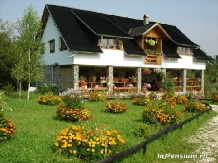 Rural accommodation at  Pensiunea Liana