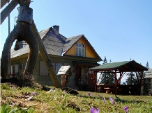Cabana Croitor - accommodation in  Bistrita (02)