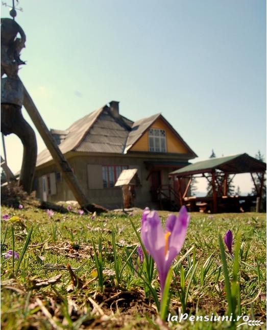 Cabana Croitor - accommodation in  Bistrita (03)