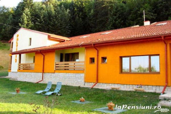 Pensiunea Paltinis - accommodation in  Slanic Moldova (12)