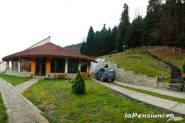 Pensiunea Paltinis - accommodation in  Slanic Moldova (14)