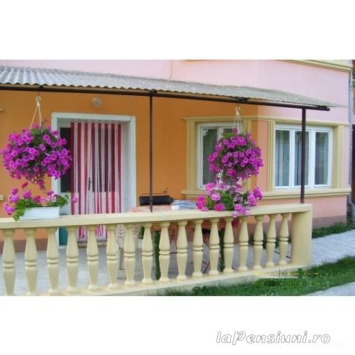 Casa Grande - accommodation in  Apuseni Mountains (12)