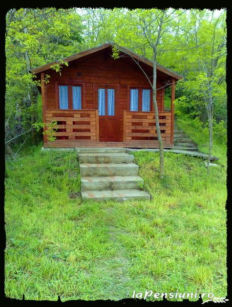 Pensiunea Palos - accommodation in  Danube Boilers and Gorge, Clisura Dunarii (06)