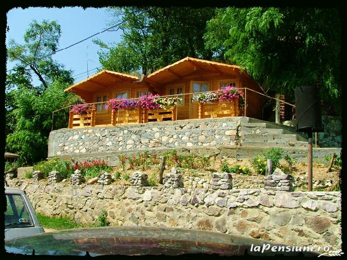 Pensiunea Palos - accommodation in  Danube Boilers and Gorge, Clisura Dunarii (12)