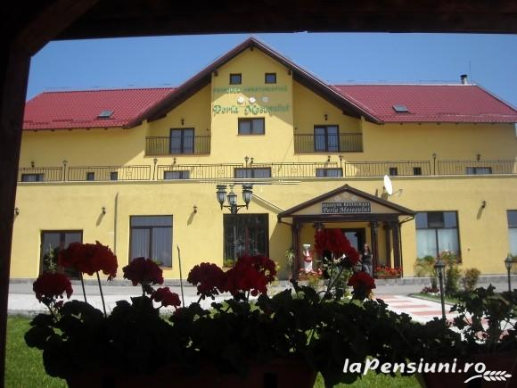 Pensiunea Perla Mesesului - accommodation in  Apuseni Mountains (03)