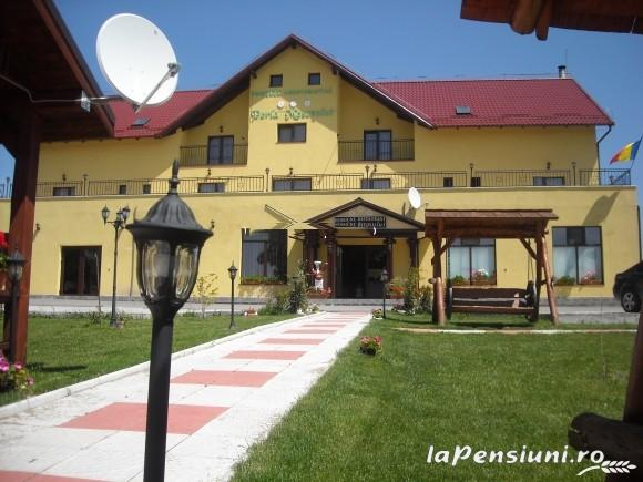 Pensiunea Perla Mesesului - accommodation in  Apuseni Mountains (05)