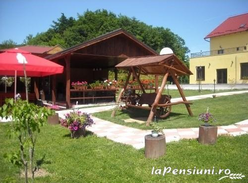 Pensiunea Perla Mesesului - accommodation in  Apuseni Mountains (13)