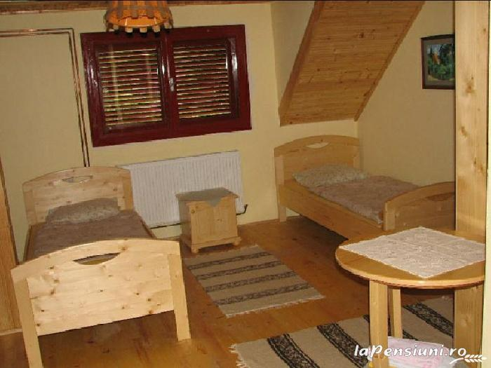 Pensiunea Magnolia - accommodation in  Apuseni Mountains (04)
