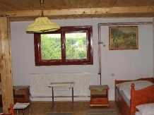 Pensiunea Magnolia - accommodation in  Apuseni Mountains (05)
