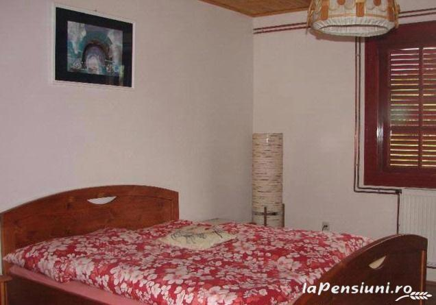 Pensiunea Magnolia - accommodation in  Apuseni Mountains (07)