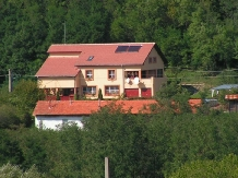 Pensiunea Blue Eyes - accommodation in  Danube Boilers and Gorge, Clisura Dunarii (01)