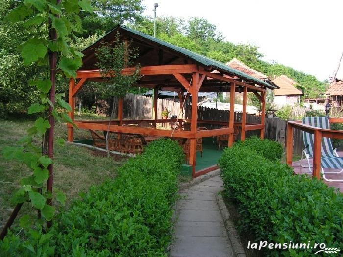 Pensiunea Blue Eyes - accommodation in  Danube Boilers and Gorge, Clisura Dunarii (02)