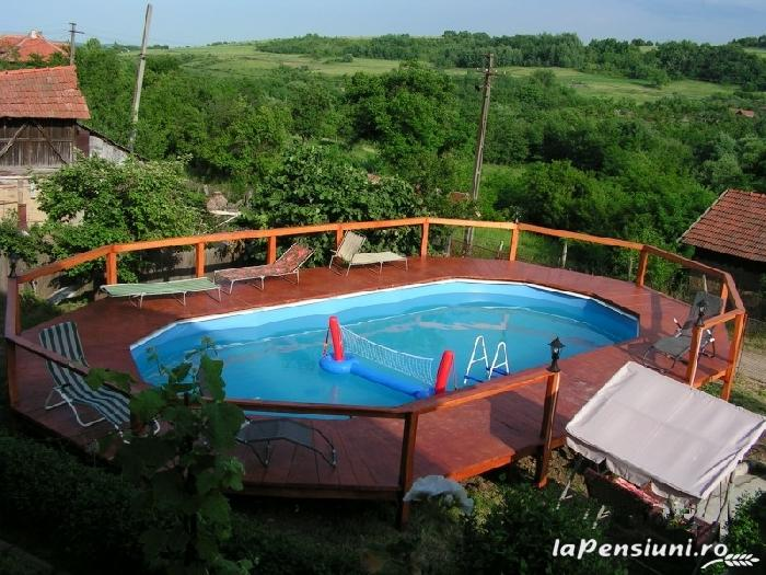 Pensiunea Blue Eyes - accommodation in  Danube Boilers and Gorge, Clisura Dunarii (04)