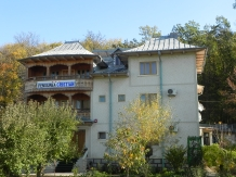 Rural accommodation at  Pensiunea Cristian