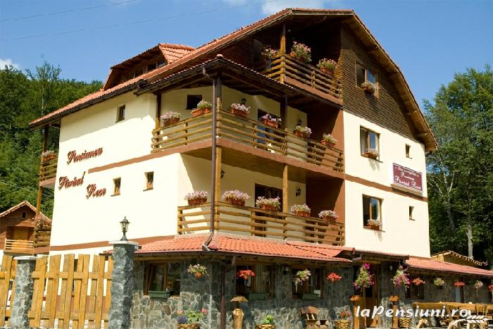 Pensiunea Paraul Rece - accommodation in  Fagaras and nearby, Transfagarasan, Balea (01)