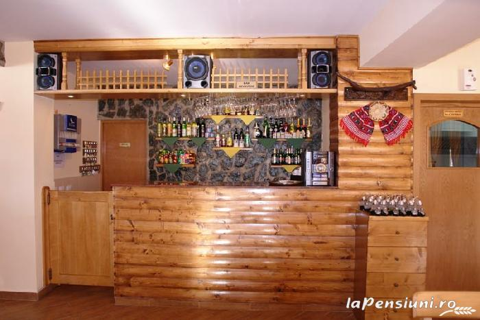 Pensiunea Paraul Rece - accommodation in  Fagaras and nearby, Transfagarasan, Balea (07)