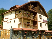 Pensiunea Paraul Rece - accommodation in  Fagaras and nearby, Transfagarasan, Balea (12)