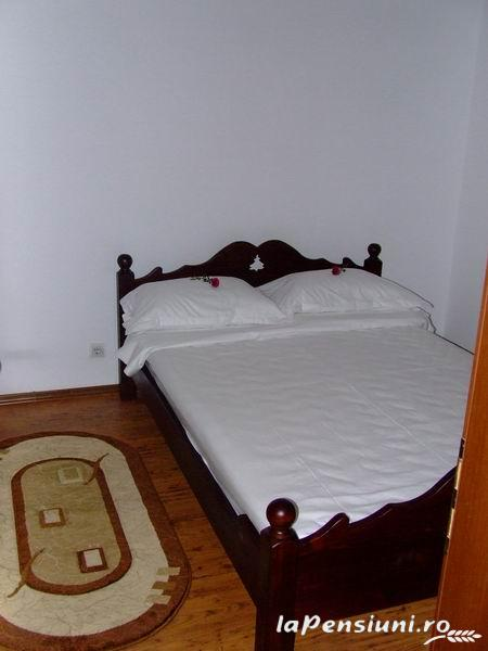Hanul Roua Sanzienelor - accommodation in  Fagaras and nearby (09)