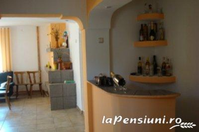 Pensiunea Magura - accommodation in  Fagaras and nearby, Transfagarasan (02)