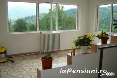 Pensiunea Magura - accommodation in  Fagaras and nearby, Transfagarasan (04)