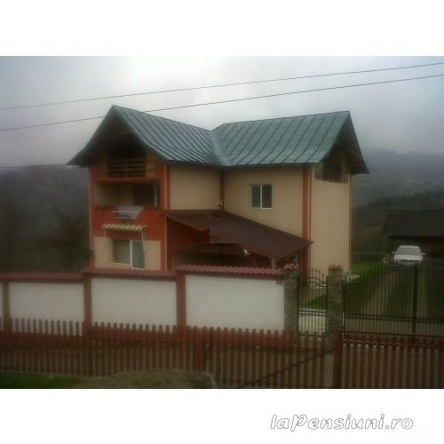 Pensiunea Magura - accommodation in  Fagaras and nearby, Transfagarasan (07)